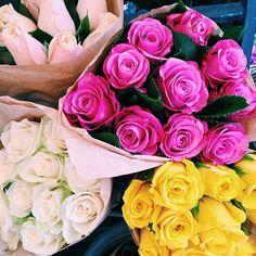 ●❁ڿڰۣ❁ ஜℓvஜ ♡❃∘✤ ॐ♥..⭐..▾๑ ♡༺✿ ☾♡·✳︎· ❀‿ ❀♥❃.~*~. SUN 10th JAN 2016!!!.~*~.❃∘❃✤ॐ ♥..⭐.♢∘❃♦♡❊** Have a Nice Day! **❊ღ༺✿♡^^❥•*`*•❥ ♥♫ La-la-la Bonne vie ♪♥ ᘡlvᘡ ❁ڿڰۣ❁●
