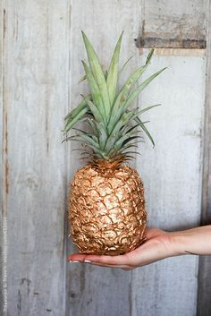 Party Like a Pineapple | Gold Pineapple, Gold and Studios