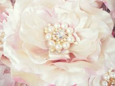 Close up of Miss Rose Sister Violet Flowers