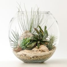 Terrariums: preferably in mason jars for the American feel but this look is good too for creating the relaxed spa atmosphere.