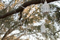 Lanterns in ceremony tree- Rustic Florida Wedding- Lange Farm in Dade City {Curtiss Bryant Photography}