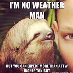 I am no Weather Man.... #sloth has returned!! #rapesloth #funny