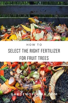How to select the right fertilizer for your fruit trees. Everything you need to know when buying fertilizers for fruit tree production.