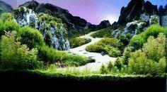 Создание акваскейпа аквариумистика, Акваскейп, Акваскейпинг, лес