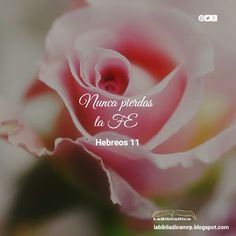 LaBibliaDice: Hebreos 11
