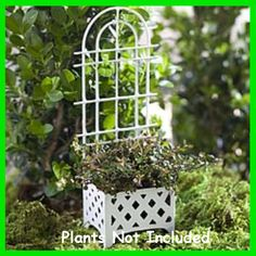 A lovely addition for your fairy garden http://www.fairygardenfun.net/products/trellis-planter-in-white?utm_campaign=social_autopilot&utm_source=pin&utm_medium=pin