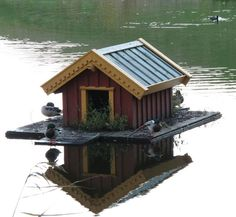 """duck house"" Oh. My. Goodness! I need to live near a lake now so I can have a duck house that I can take care of!! :)"