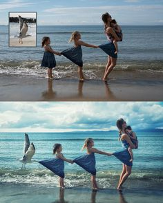 Photoshop Before and After Seagull