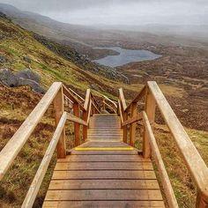 This Is The Most Underrated Walking Trail In Ireland — Here's Why - Lovin. Dublin, Walking Routes, Mountain Trails, Little Island, Stairway To Heaven, Emerald Isle, Round Trip, Stairways, Garden Bridge