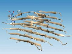 Our Parkinson's Place: Binding Sites on Amyloid Beta Peptide Discovered