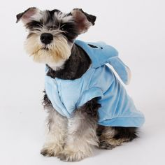 Our Lilo and Stitch Dog Costume will make your doggy gorgeously cosy, around the house or on their walkies. Fans of Lilo & Stitch will simply love this costume! https://www.dressyourdoggy.com/collections/funny-dog-costumes/products/lilo-and-stitch-dog-costume?variant=32514494418