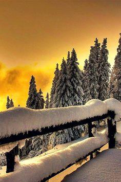Sunset Fence, Blackwater Falls, West Virginia photo via vera Winter Magic, Winter Snow, Winter Christmas, Winter Time, Blackwater Falls, Winter Schnee, Winter Sunset, Snow Scenes, Winter Beauty