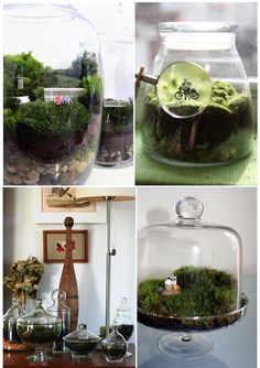 Joias do Lar: DIY - Mini terrário
