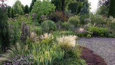 Buchskugel, Zwergahorn und Buddha – Kiesgärten können ziemlich spießig aussehen. Dabei geht es ganz anders, wie ein Besuch bei Gartendesigner Peter Janke zeigt.