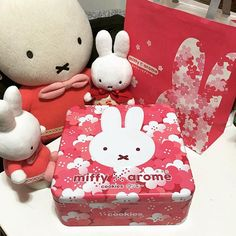 【dreamingfffiona】さんのInstagramをピンしています。 《- Miffy fans must have 😝  The tin is sooooo pretty  I saw it from one of the IG fans and asked my hubby to buy one to me :) I've just want the miffy Box ... Not the cookies hehe  Any miffy cookie inside ? ( I haven't opened it yet )  Any miffy'fans bought this cookie too ?  #mymiffy#miffycollection#fifimiffy #miffycookies#lovely#hongkong#thankyou#桜#sakura#東海堂#arome#miffy#dickbruna#nijntje#ミッフィー#ミッフィ#miffylover#豪斯登堡》