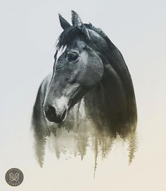 Horse Double Exposure by Studio in the Stable https://www.instagram.com/p/BOvYvE8h4Rx/?taken-by=studiointhestable