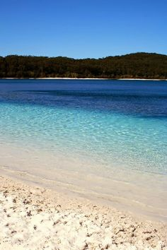 Lake McKenzie, Fraser Island, Australia - love this place! The sand that you see is pure white and some of the purest in the world. It is so fine that you can polish your jewellery in it, which I did. Sure did make my diamonds shine! Oh The Places You'll Go, Places To Travel, Places To Visit, Fraser Island Australia, Queensland Australia, Tasmania, Am Meer, Relax, Bali