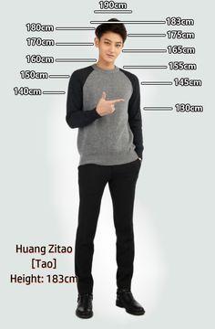 Height Chart : Tao