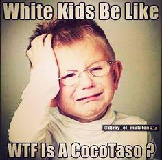 """""""Te voy a dar un clase cocotazo!!!"""" Caribeños be like..."""