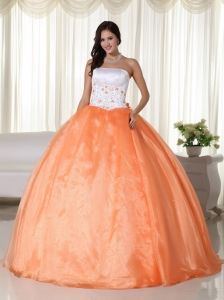 Orange Ball Gown Strapless Floor-length Organza Quinceanera Dress