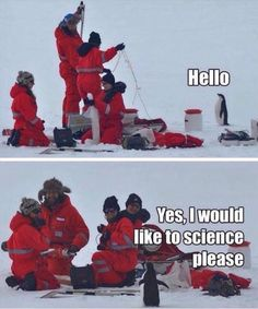 Yes, I would like to science please. Cute penguin.