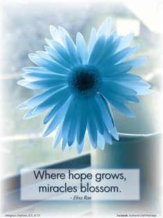 Where hope grows, miracles blossom.