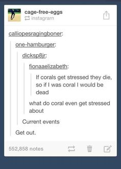The time they contemplated the mental health of sea coral.