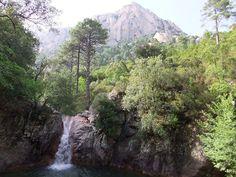 Region de L'Alta-Rocca - Zonza est une commune française située dans le département de la Corse-du-Sud et la collectivité territoriale de Corse. Elle appartient à la microrégion du Fiumicicoli, dans l'est de l'Alta Rocca.