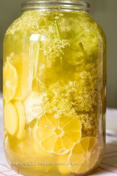 Bezinková limonáda Scd Recipes, Healthy Recipes, Home Canning, Easy Cooking, Raw Vegan, Natural Healing, Health And Beauty, Cucumber, Smoothies