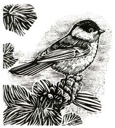 Chickadee - wood engraving - Rick Allen, U.S.A.