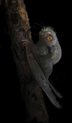 Potoognathus by Dinomaniac.deviantart.com on @DeviantArt