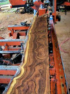 natural edge mesquite wood