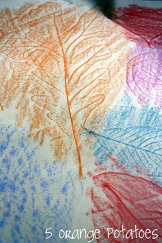 leaf rubbing - easy nature activity