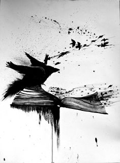 Crow blackbird raven book blackwork sketch tattoo