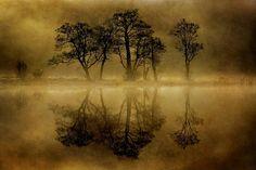 Loch Chon, Trossachs - Scotland.