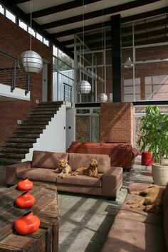 House Enkalweni, Bloemfontein, Free State, South Africa. Interior. Free State, Interior Inspiration, Interior Architecture, South Africa, Architects, Old Things, African, Patio, Ceiling Lights