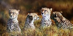 Original North Korea Oil Painting Leopards brothers and sisters li jin ge First-Class artists of korea born in Pyongyang graduated from Pyongyang Art university specialized in oil painting work in Leopards, North Korea, Animal Paintings, Oil, Artist, Sisters, Animals, Animales, Animaux