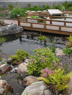 Another view of a #pond at our retail store #watergarden