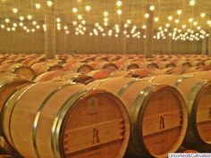 The Great Ch. Latour marvelous barrel room
