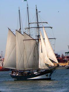 """Three-masted schooner """"Oosterschelde"""" seen in the Nieuwe Waterweg (New Waterway) at Pernis (Rotterdam), Netherlands."""