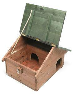 Hedgehog House                                                                                                                                                                                 More