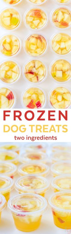 Frozen Dog Treats Homemade - Summer Dog Treats Frozen Ice Cubes - Homemade Dog Treats Easy - Homemade Frozen Dog Treats Recipe - Chicken Apple Dog Treats - Chicken Broth Dog Treats Frozen - Apple Dog Treats Homemade