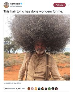 Literally Just 100 Fucking Hilarious Australian Memes Sam Neill, Crazy Hair, Funny People, Funny Things, Funny Photos, Make Me Smile, I Laughed, Laughter, Short Hair Styles