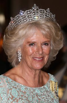 HRH the Duchess of Cornwall at the Commonwealth Heads of Government 2013 Opening Ceremony in Colombo, Sri Lanka 15 Nov 2013.