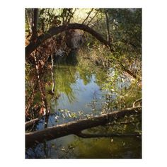 #Franklin Canyon Park Lake 4 Letterhead - #office #gifts #giftideas #business