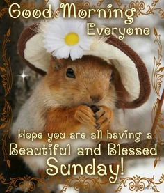 {*}Good Morning Beautiful Sunday quotes quote days of the week sunday sunday quotes happy sunday