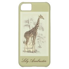 ==>>Big Save on          	vintage giraffe iphone 5C case           	vintage giraffe iphone 5C case Yes I can say you are on right site we just collected best shopping store that haveThis Deals          	vintage giraffe iphone 5C case today easy to Shops & Purchase Online - transferred directly...Cleck Hot Deals >>> http://www.zazzle.com/vintage_giraffe_iphone_5c_case-179525004971286545?rf=238627982471231924&zbar=1&tc=terrest