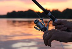 If you are a beginner at fishing or you are into a family picnic tour, it would be best if you get moderate kayak fishing rods and reels. Surf Fishing Rods, Fishing Rods And Reels, Rod And Reel, Kayak Fishing, Types Of Fish, Online Travel, Best Fishing, Fishing Equipment, Kayaking