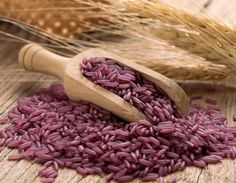 Chinese scientists have created genetically modified purple rice that can reduce the risk of certain cancers, cardiovascular disease, diabetes and other chronic disorders. Researchers developed