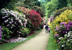 A flower garden in what must have been a magnificent walled vegetable garden. It is surrounded by a woodland garden (developed by the Brocklehurst family with Garden On A Hill, Garden Of Eden, Green Farm, Garden Images, Woodland Garden, Days Out, Love Flowers, Vegetable Garden, In The Heights